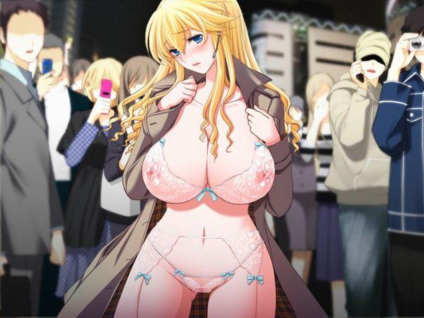 【伝統】「コートの下は裸」そんなクラシカルスタイルで野外露出する二次エロ画像 【4】