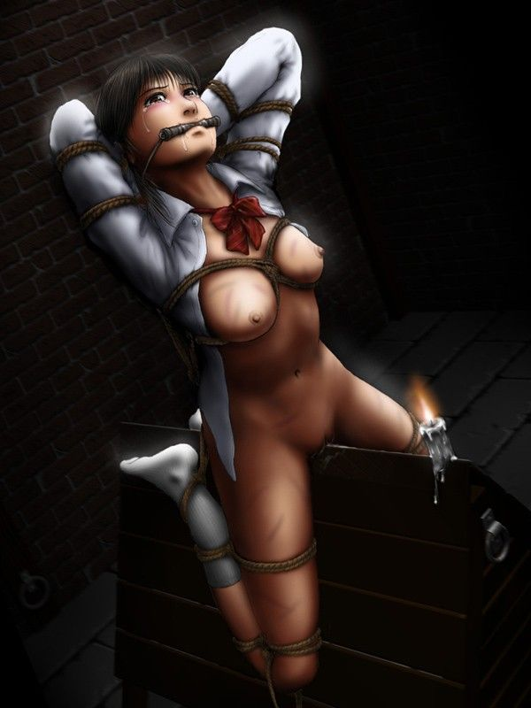 【拷問】三角木馬に乗せられて辛そうな二次エロ画像 【33】
