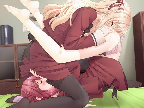 【相互愛撫】女同士でマンコを舐めあうシックスナインの二次エロ画像 【24】