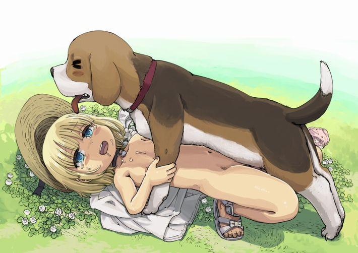 【戌年なので】性的な意味で犬が好きな女子達の獣姦二次エロ画像【24】