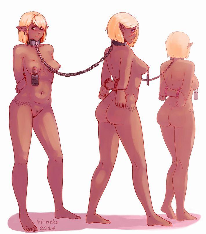 【人権なんて無い】性奴隷達が家畜のように並んでいる悲惨な二次エロ画像【20】