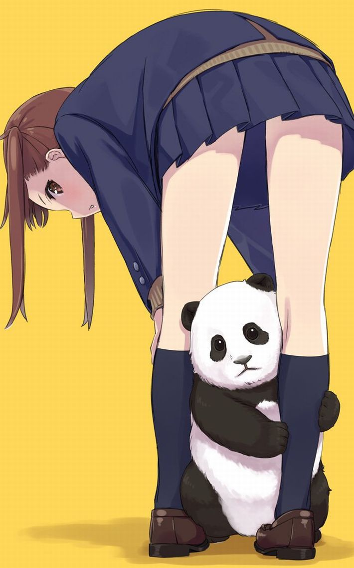 【あっパンダだ!!】2月22日はネコの日なので・・・大熊猫ことパンダと美少女の二次画像【カワイイーッ】【1】