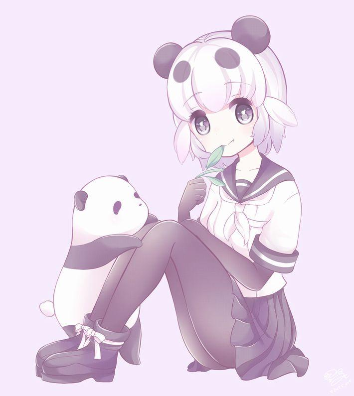 【あっパンダだ!!】2月22日はネコの日なので・・・大熊猫ことパンダと美少女の二次画像【カワイイーッ】【30】