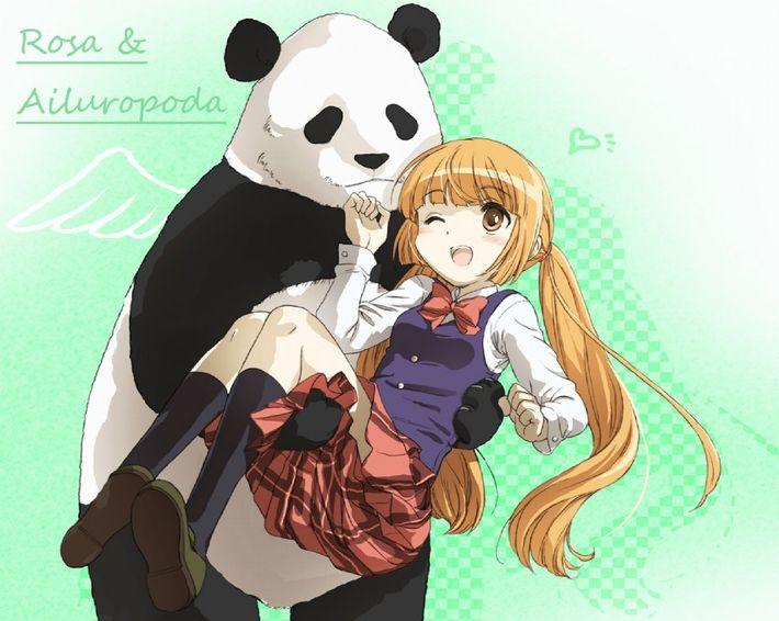 【あっパンダだ!!】2月22日はネコの日なので・・・大熊猫ことパンダと美少女の二次画像【カワイイーッ】【37】