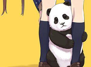 【あっパンダだ!!】2月22日はネコの日なので・・・大熊猫ことパンダと美少女の二次画像【カワイイーッ】