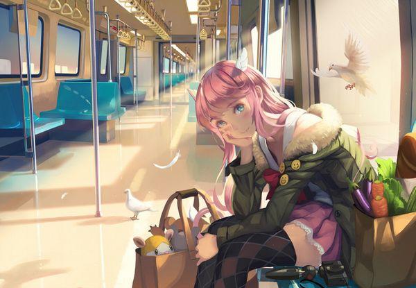 【日常のエロス】電車に乗ってる女の子達のパンチラ・胸チラ等二次エロ画像【29】