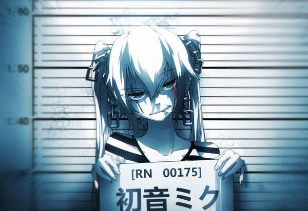 【マグショット】刑務所に入れられる予定がありそうな女子達の二次エロ画像【33】