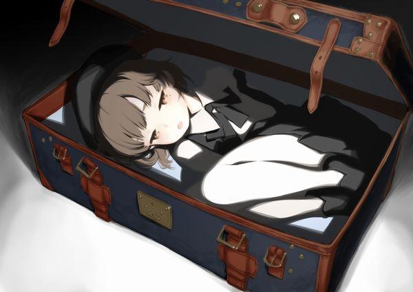 【メキシコの日常】スーツケース開けたら人が!?みたいな二次エロ画像【30】