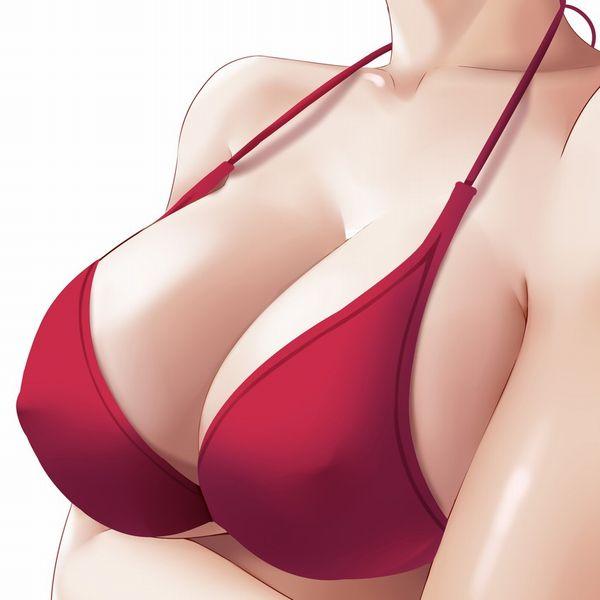 【おっぱい接写】着衣の巨乳をガン見してるような二次エロ画像【35】