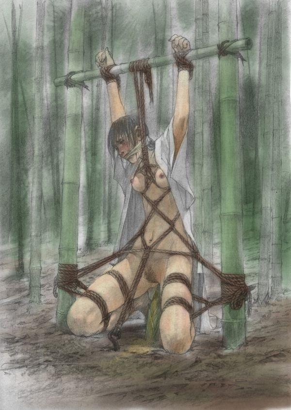 【吐けば楽になるゾ】敵に捕まって拷問を受けてる二次リョナ画像【38】
