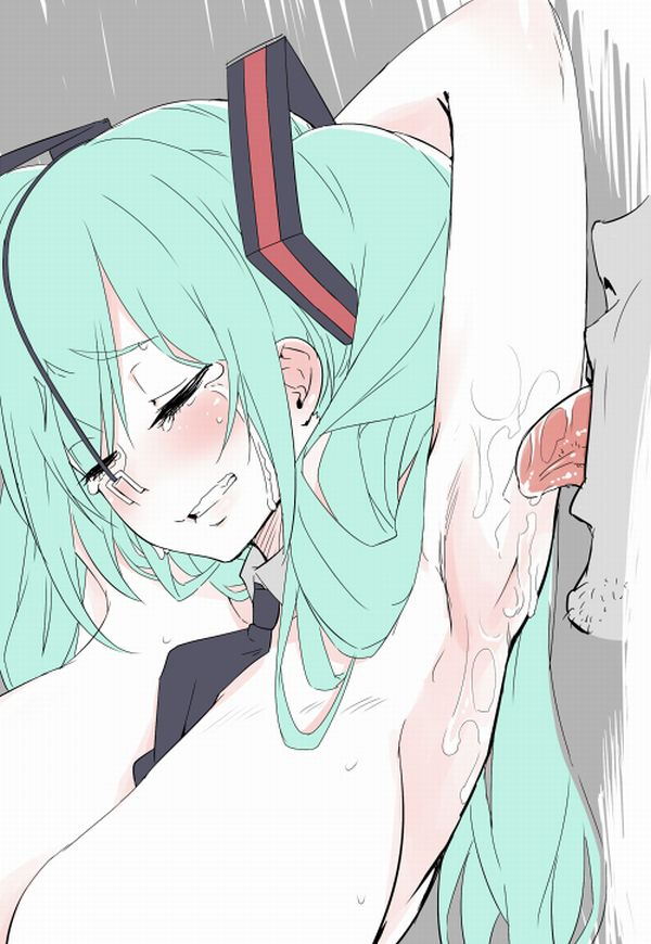 【腋舐め】可愛い女の子の腋で揉んだキャベツの千切りが食べたくなる二次エロ画像【19】