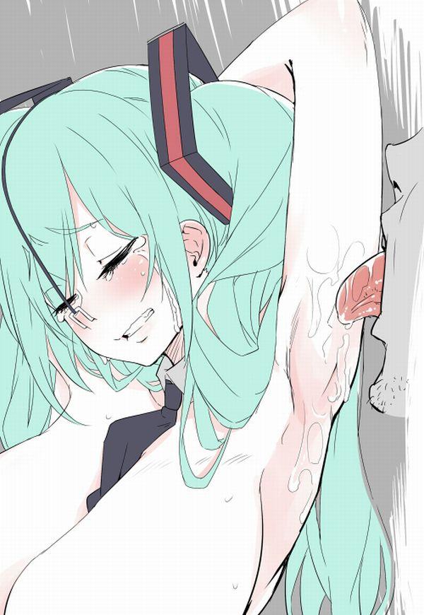 【腋舐め】可愛い女の子の腋で揉んだキャベツの千切りが食べたくなる二次エロ画像【26】
