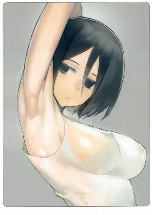【進撃の巨人】ミカサ・アッカーマンのエロ画像【12】