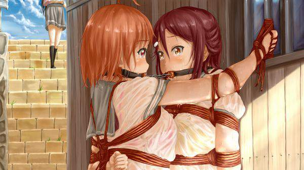 【ニコイチ】2人一緒に縛られてる女子達の二次エロ画像【28】
