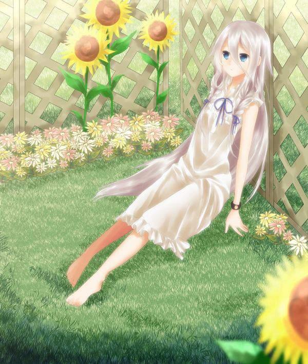 【あの花】本間芽衣子(ほんま めいこ)ことめんまのエロ画像【あの日見た花の名前を僕達はまだ知らない。】【16】