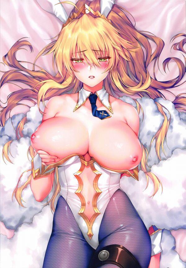 【Fate/GrandOrder】水着獅子王のエロ画像【5】