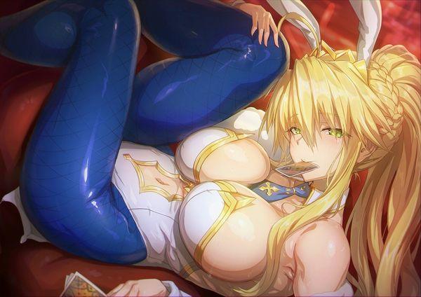 【Fate/GrandOrder】水着獅子王のエロ画像【39】
