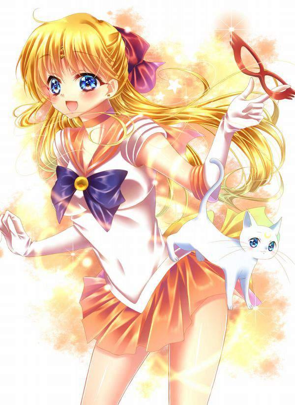 【美少女戦士セーラームーン】愛野美奈子(あいのみなこ)のエロ画像【セーラーヴィーナス】【47】