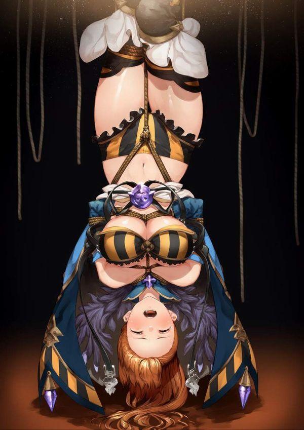 【これは拷問】逆さ吊りにされてる二次エロ画像【9】