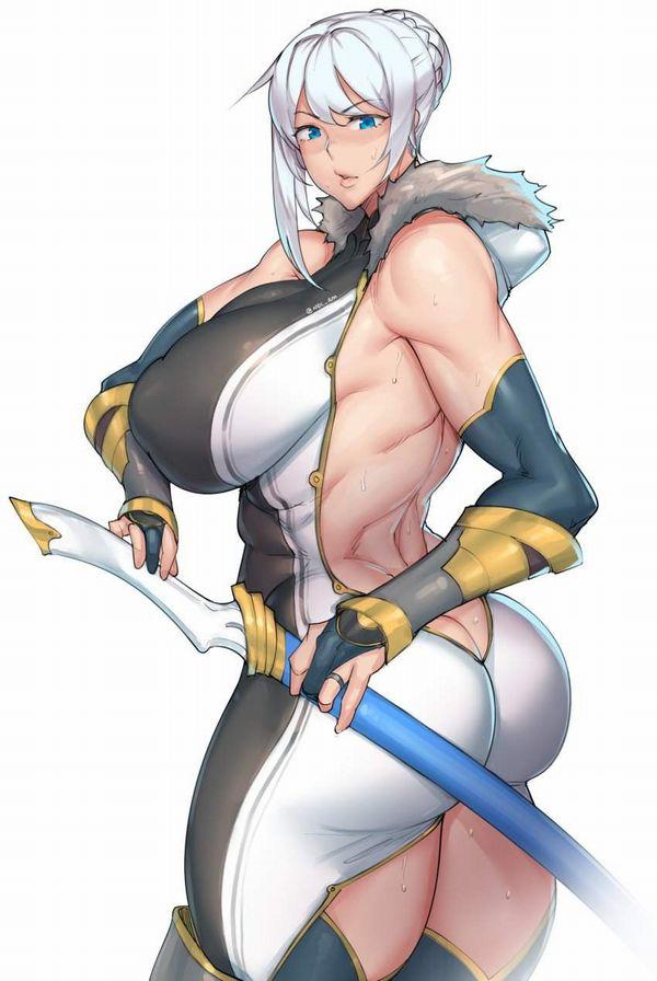 【防御力に一抹の不安】露出の多い格好してる女剣士達の二次エロ画像【10】
