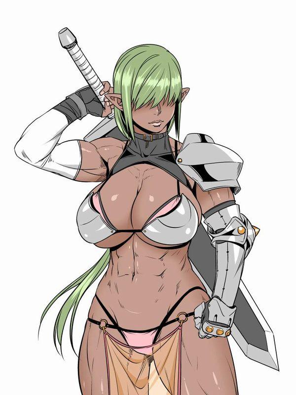 【防御力に一抹の不安】露出の多い格好してる女剣士達の二次エロ画像【32】