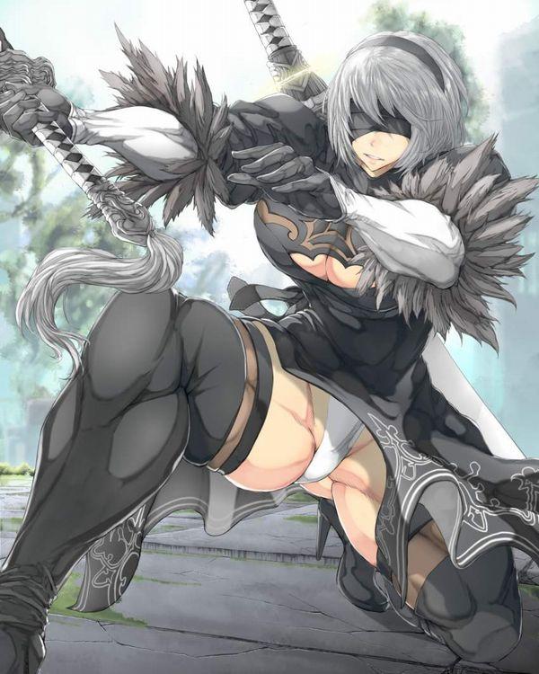 【防御力に一抹の不安】露出の多い格好してる女剣士達の二次エロ画像【38】