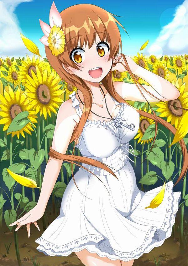 【ニセコイ】橘万里花(たちばなまりか)のエロ画像【41】