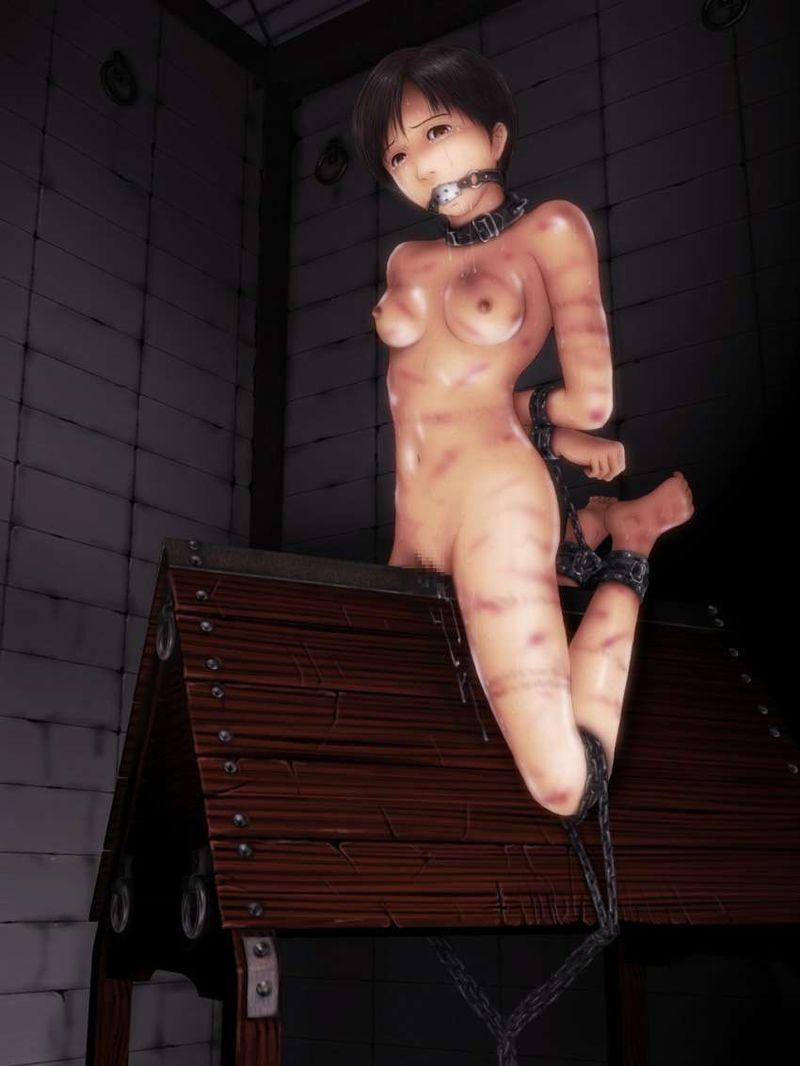 【あんたも好きねえ】身体に縄目の痕が残ってる女子達の二次エロ画像【17】