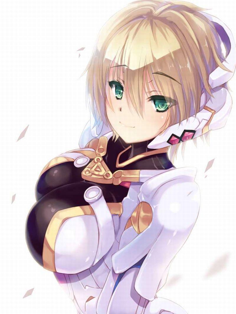 【ゼノブレイド】フィオルン(Fiora)のエロ画像【Xenoblade】【9】