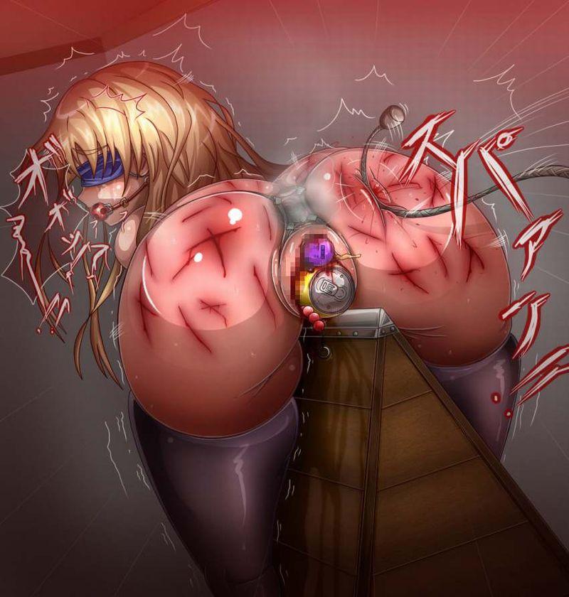 【痛みを伴う構造改革】異物挿入で処女喪失した女子達の二次エロ画像【6】
