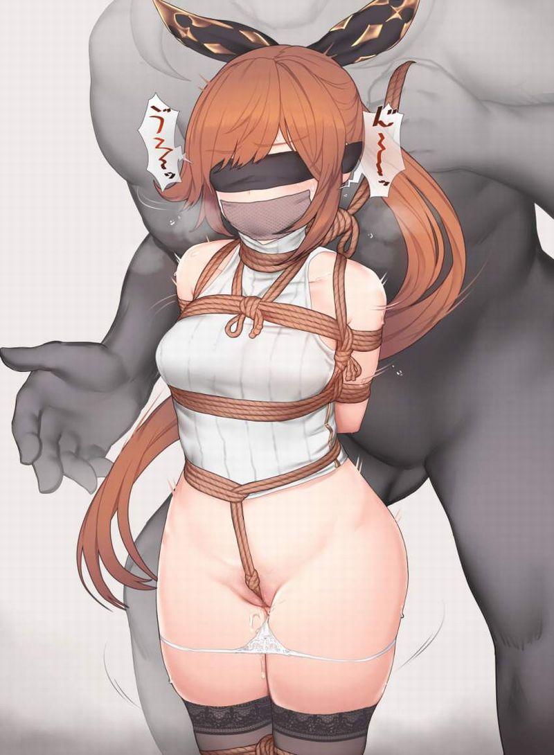 【SMプレイ真っ最中】目隠し&後手に縛られてるドM女子達の二次エロ画像【3】